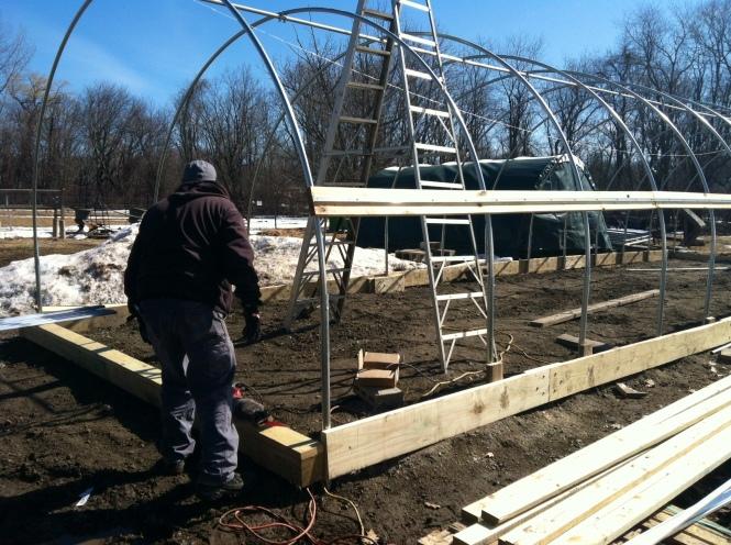 new-greenhouse