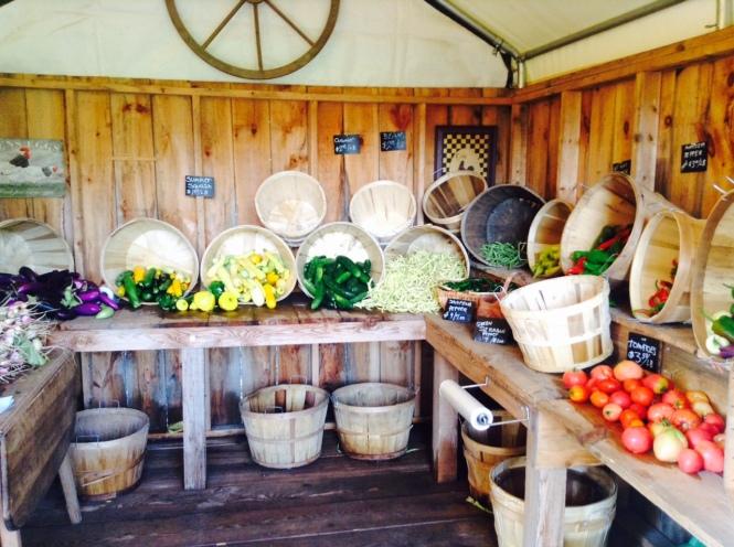 farm-stand-bounty